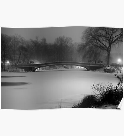 Central Park in the Snow 10 Poster