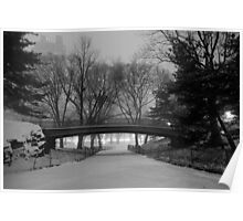 Central Park in the Snow 9 Poster