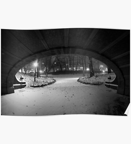Central Park in the Snow 8 Poster