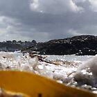 Mini Tidal Wave by craigpeers9