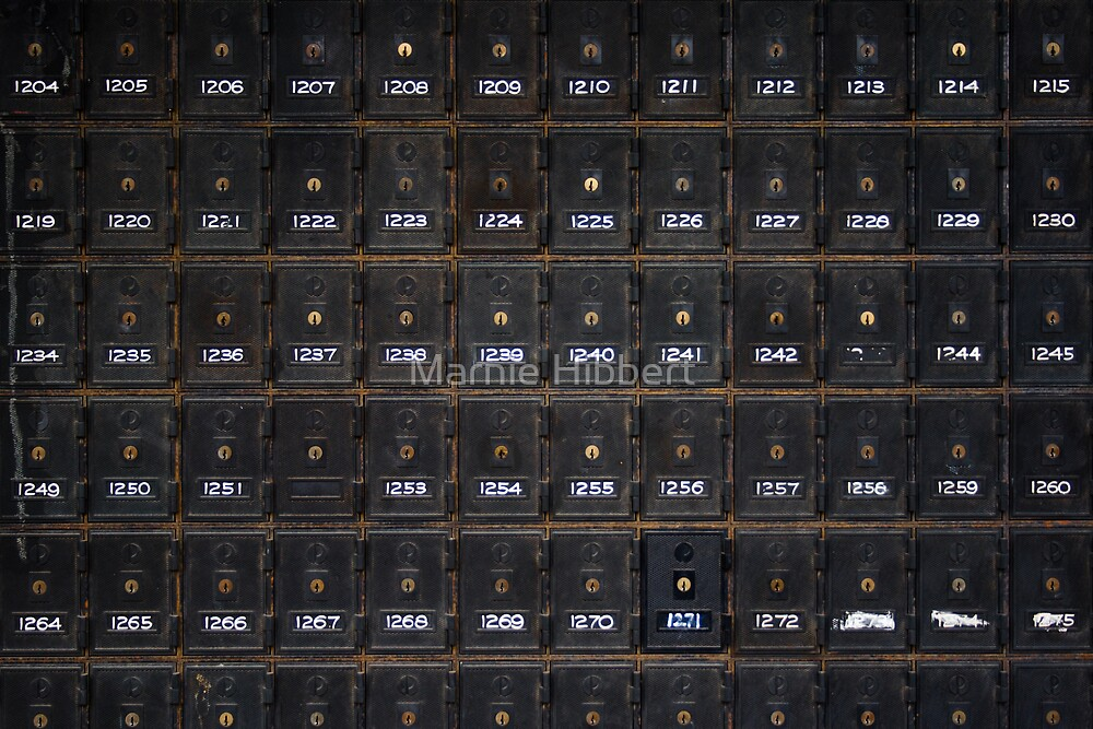 Life Box by Marnie Hibbert