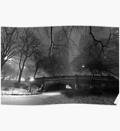 Central Park in the Snow 6 Poster