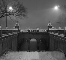 Central Park in the Snow 3 by Brian Ach