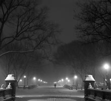 Central Park in the Snow 2 by Brian Ach