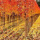 Treescape 4 by Rebecca Cozart