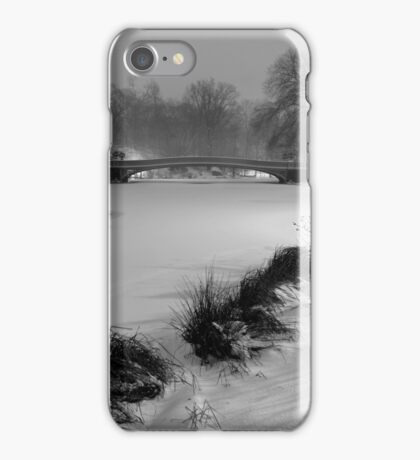 Central Park in the Snow 12 iPhone Case/Skin