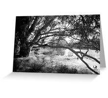 The lake at Dunkeld Community Park in Dunkeld, Victoria, in monochrome Greeting Card