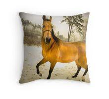 golden dance Throw Pillow