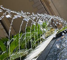 North Terrace Fountain by eramophla