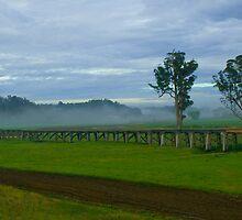 Sprinkler Mist by HoaK