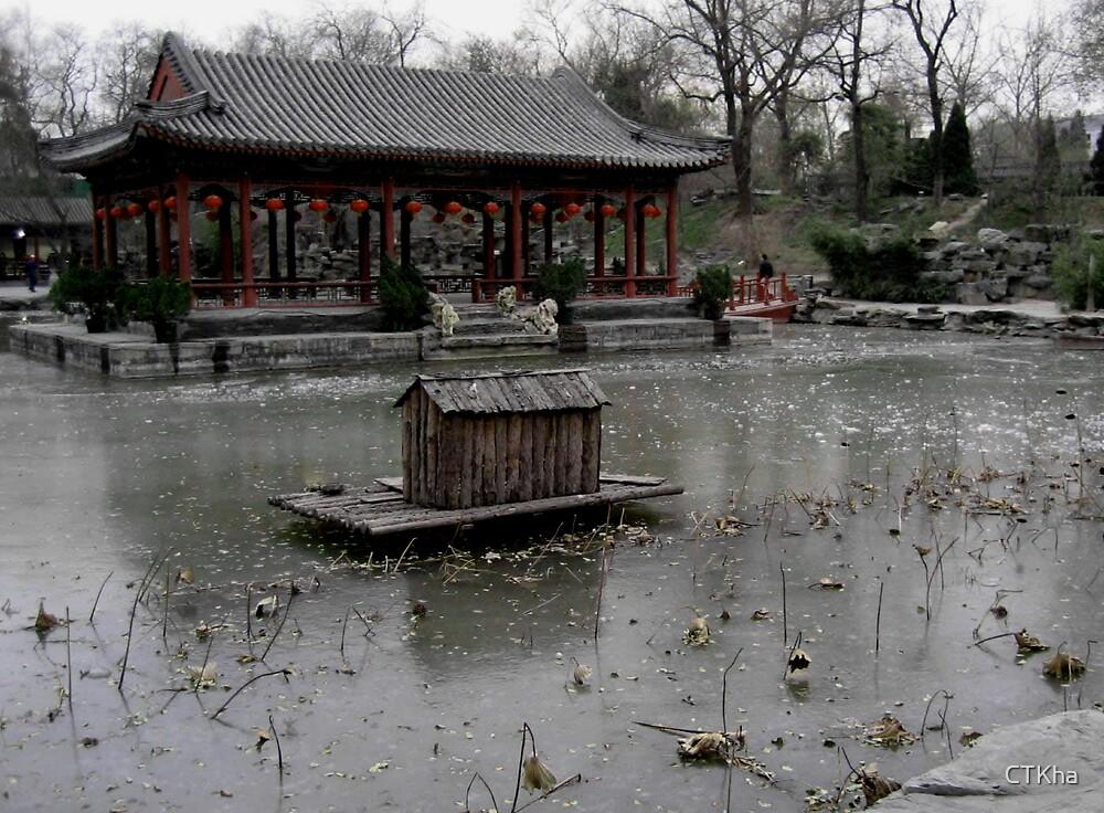 Winter Lake - Beijing by CTKha