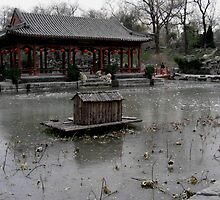 Winter Lake - Beijing by CTKha