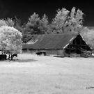 Irving College Barn by © Joe  Beasley IPA