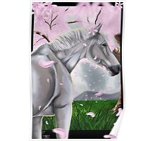 Horse Cherry Blossoms  Poster