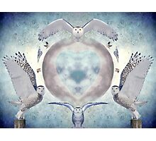 Whispers of my imagination Photographic Print