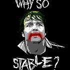 Why So Stable? by thecleverist