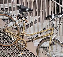 All About That Bike by joan warburton