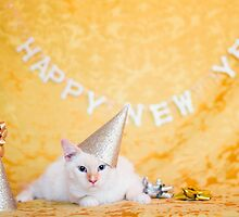 Party Animal by AndreaBorden
