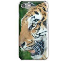Beautiful bengala tiger iPhone Case/Skin