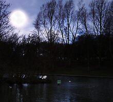 by moon light by cynthiab