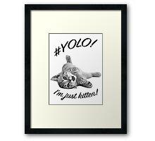 YOLO! I'M JUST KITTEN  Framed Print