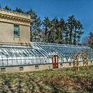 Edison's Greenhouse at Glenmont by Jane Neill-Hancock