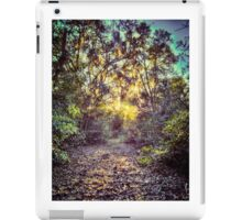 Forest Path iPad Case/Skin