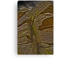 I Am A Rock Canvas Print