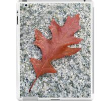 A Fallen Leaf iPad Case/Skin