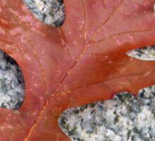 A Fallen Leaf Sticker