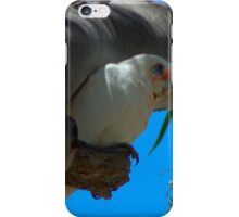 Little Corella iPhone Case/Skin