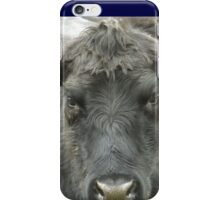 Angus cow iPhone Case/Skin