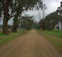 Lonely country road by ndarby1