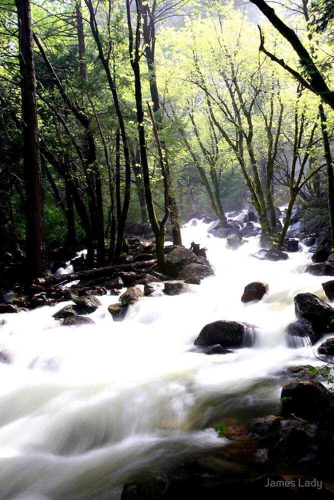 Bridal Veil Creek, Yosemite by James Lady