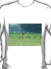 Cattle and swans T-Shirt