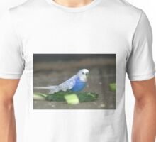 white wing blue budgie Unisex T-Shirt