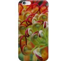Grevillea flower iPhone Case/Skin