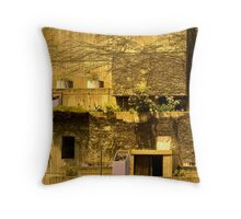 Inner City Lifestyle #3 Throw Pillow