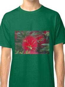 Red callistemon flower Classic T-Shirt