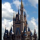 Disney Castle by Lindsey W