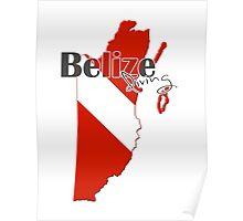 Belize Diving Diver Flag Map Poster