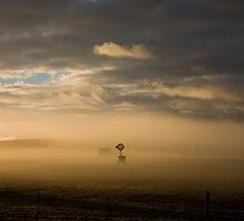 Misty Morn by Helen Simpson