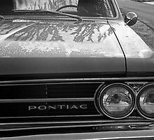 Dew on a Pontiac by James2001