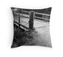 BRIDGE NEWPORT LAKES Throw Pillow