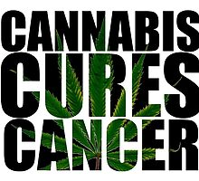 CANNABIS CURES CANCER by clone1