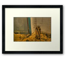 Rotting fire extinguisher Framed Print