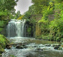 Waterfall by Richard Shepherd