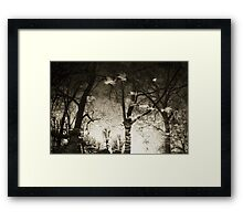 Reflections III Framed Print