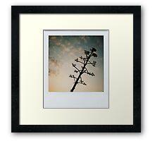 the alien tree Framed Print