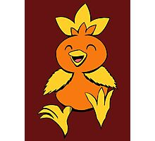 Cute Torchic  Photographic Print